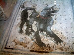 pompeii d og copy